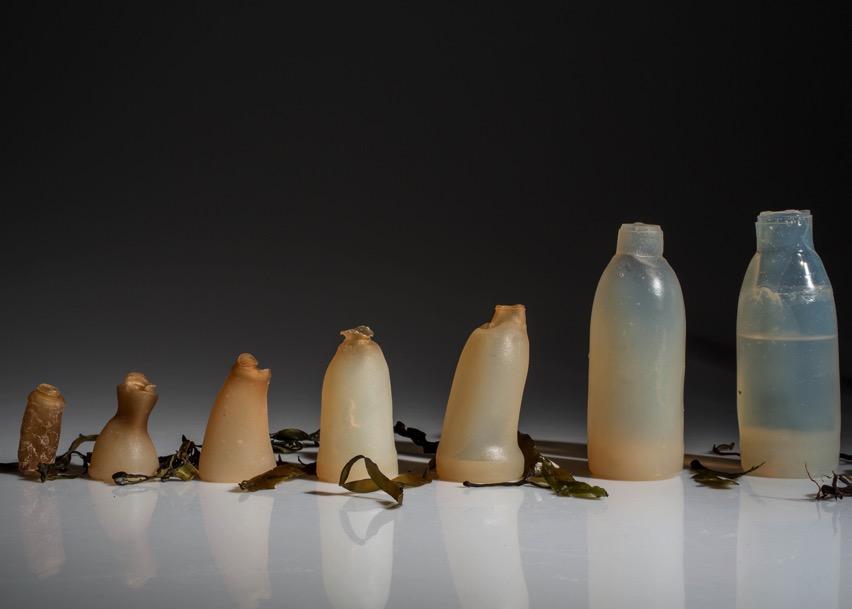 Algae water bottle by ari jonsson designmarch dezeen ban