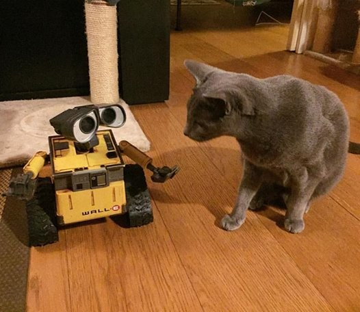 Wall-E Personal Assistant with Raspberry Pi #PiDay
