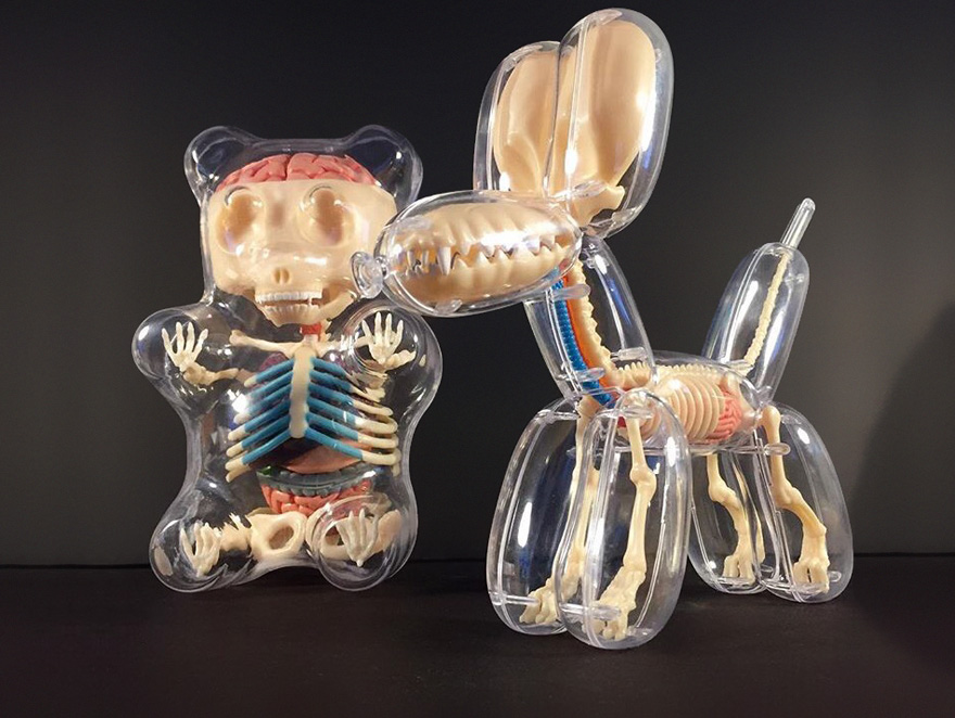 Anatomical balloons dog bear jason freeny 3