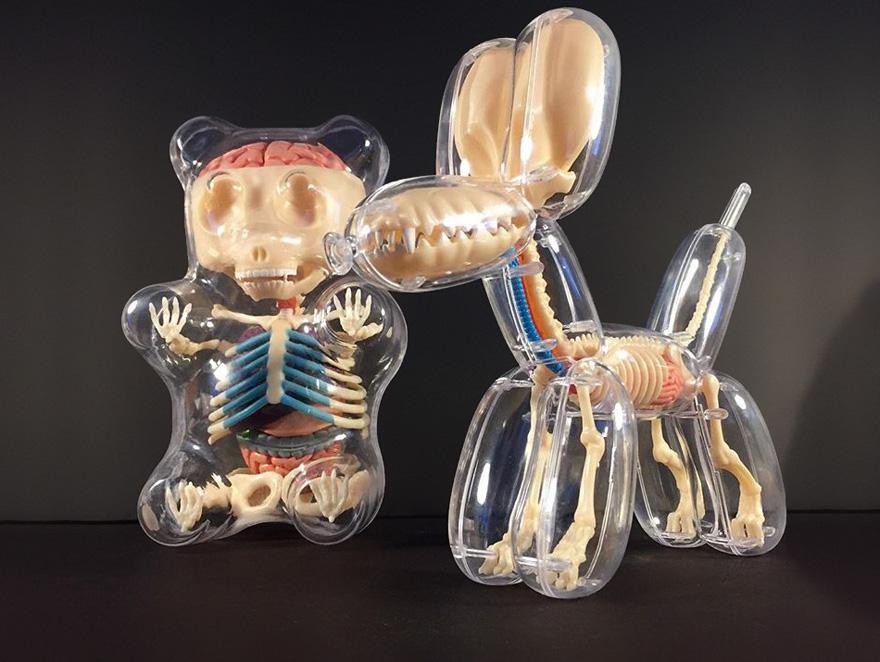 Anatomical balloons dog bear jason freeny 3