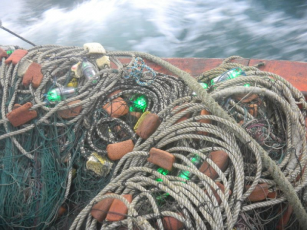 illuminating-fishing-net