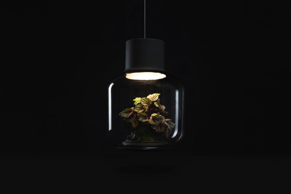 Plantlamp 05
