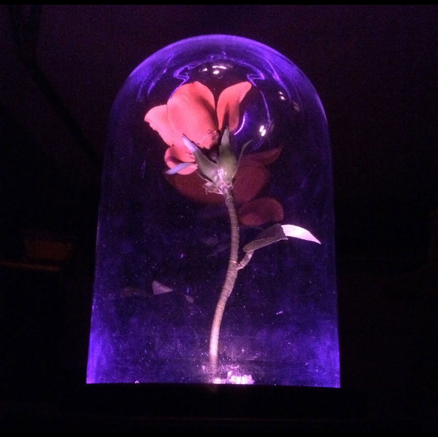 Beauty And The Beast Flower Effect With Arduino Nano Arduino