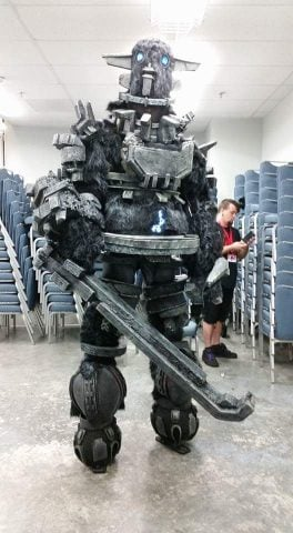Shadow of the Colossus cosplay