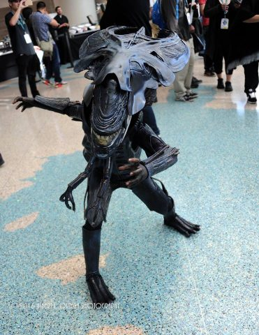xenomorph cosplay 1