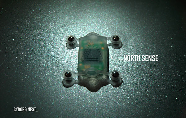 northsense
