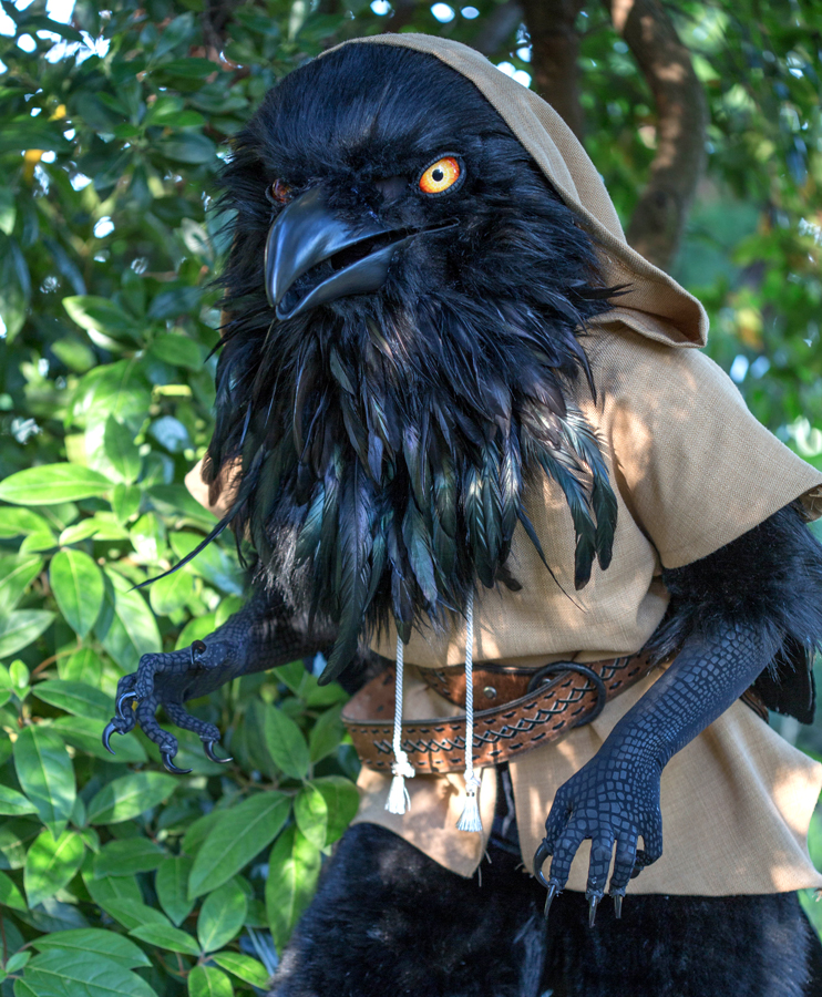 raven costume 1