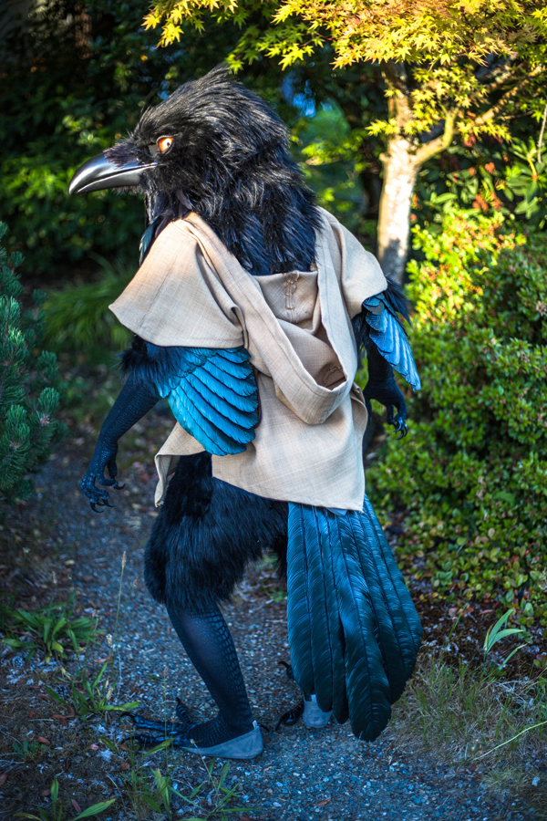 raven costume 2