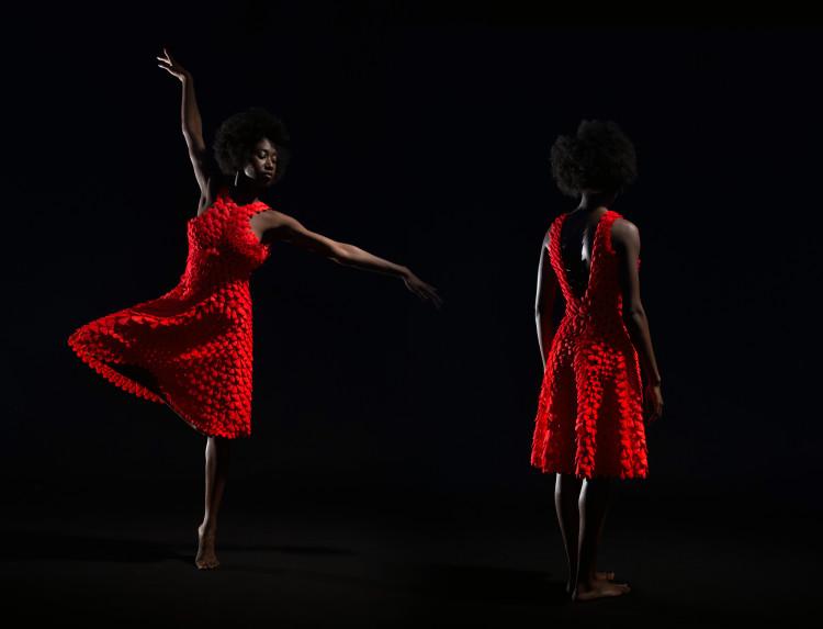 Petal Dress New