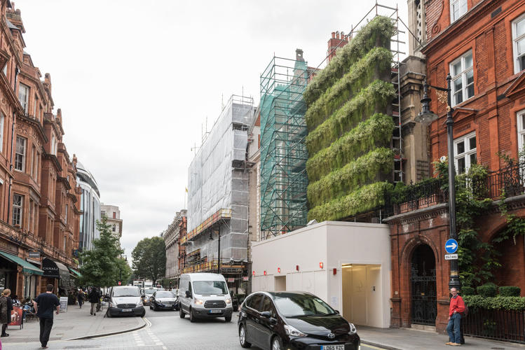 3065874 slide 2 green living wall hides london construction site