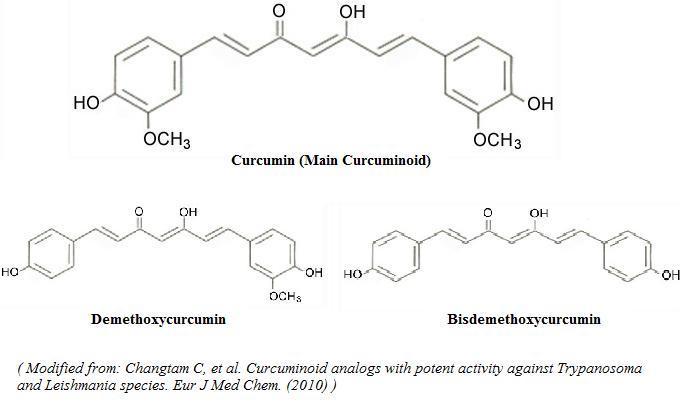 curcumin-1