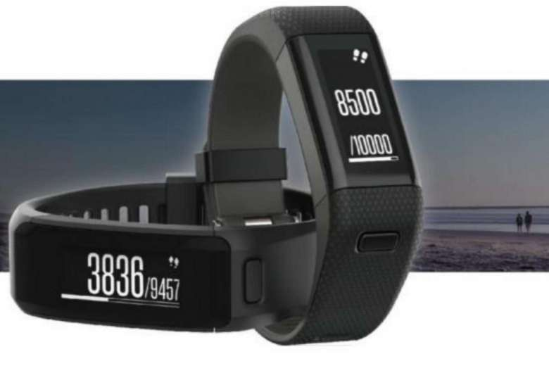 Smartwatch Garmin EZ Link