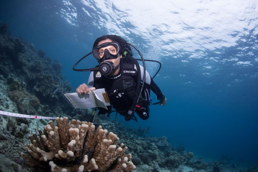 Coral Citizen Science