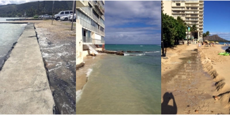 King Tides Project Hawaii
