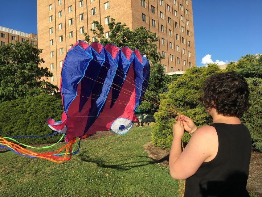 Public Lab Kite