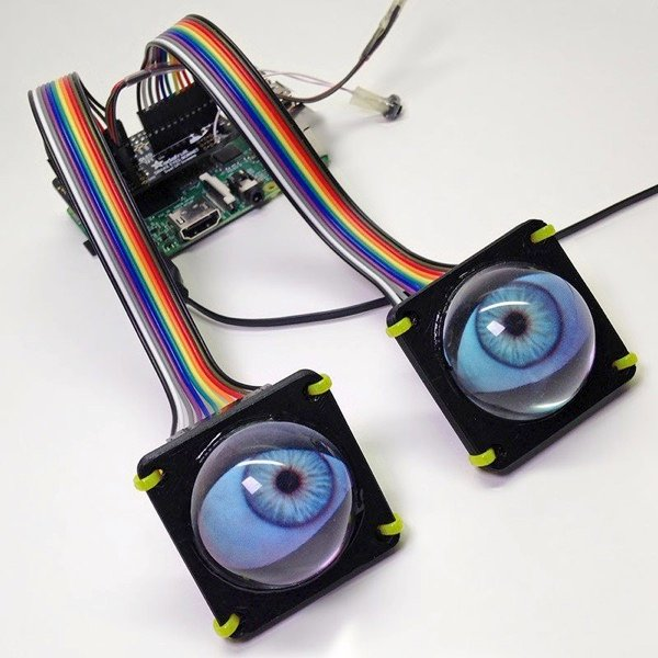 Raspberry pi eyes 800x800