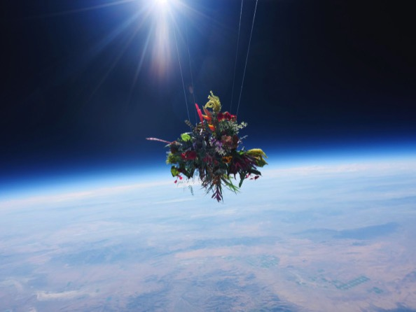 9 what happens when you launch flower bouquets into space