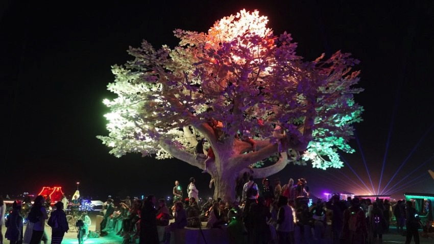 Tree of tenere studio drift burning man 2017 dezeen hero 852x479
