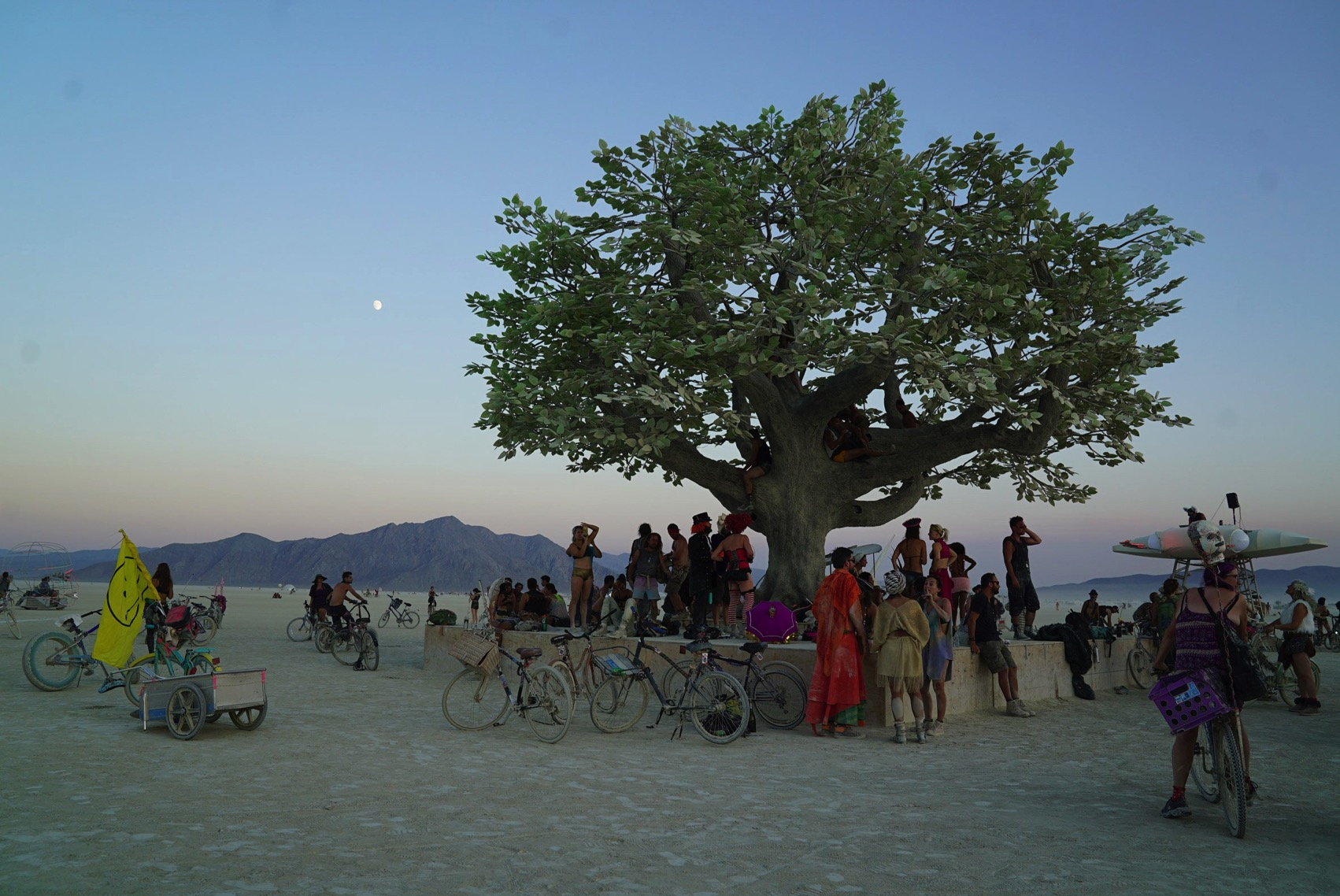 Tree of tenere studio drift dezeen 2364 col 6
