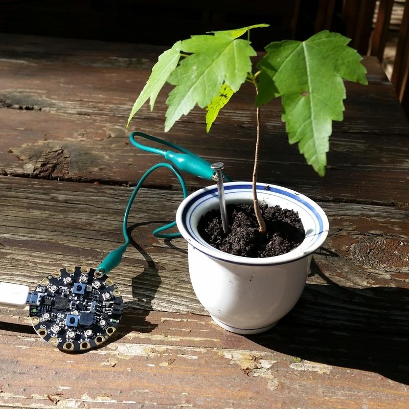 sensors_plant