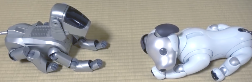 sony aibo dog interaction talk