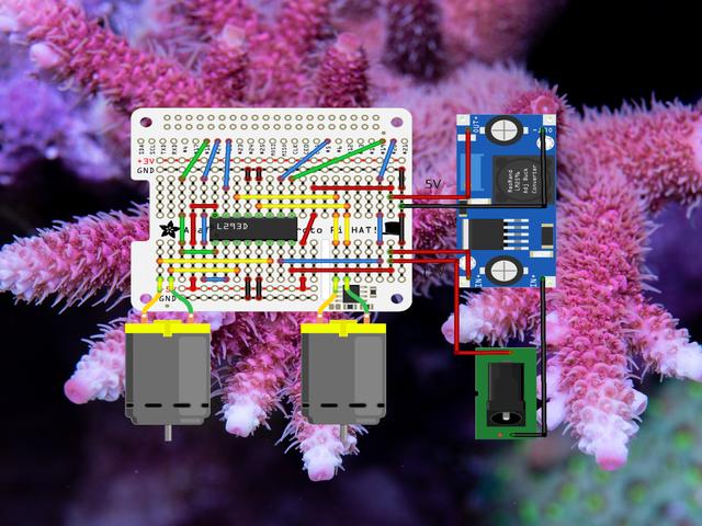 reef-pi Guide 7: Dosing Controller Automate liq