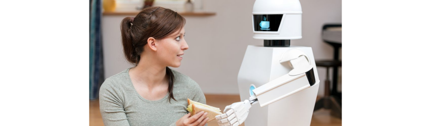 Robot Design: The Curious Case of Social Robot Aesthetics