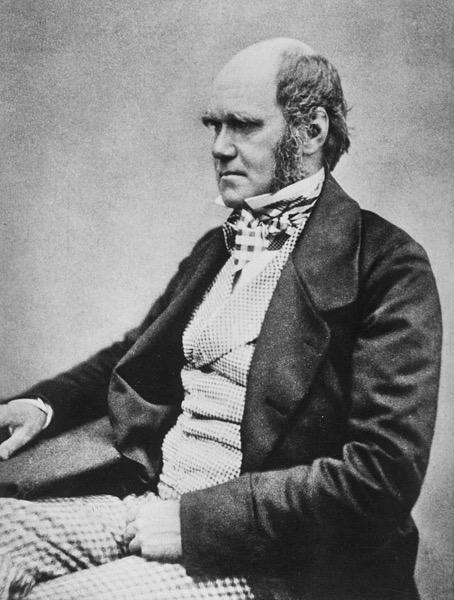800px Charles Darwin seated crop