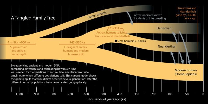 Biohacking : Discovering Our Relationship to the Denisovans