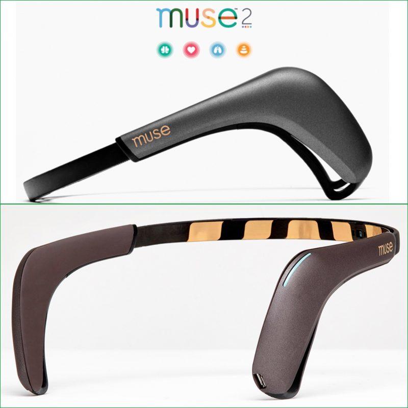 Biohacking : What Can the Muse 2 EEG Measure? « Adafruit Industries