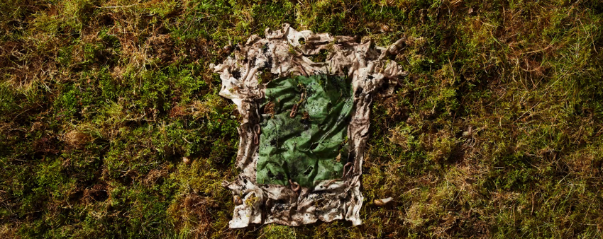 Plant and Algae T Shirt Grown in forests and bioreactors Vollebak