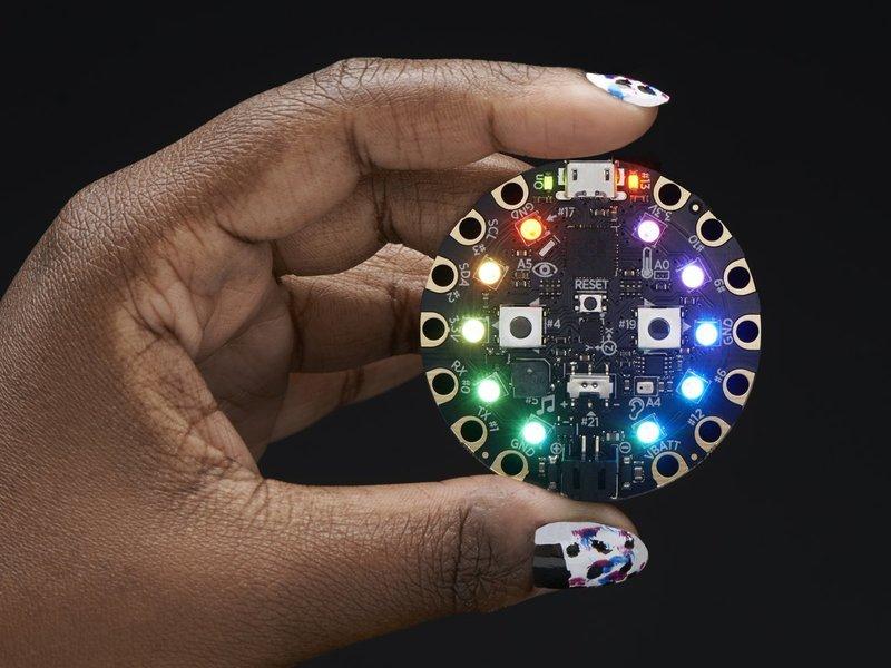 Circuit playground hand