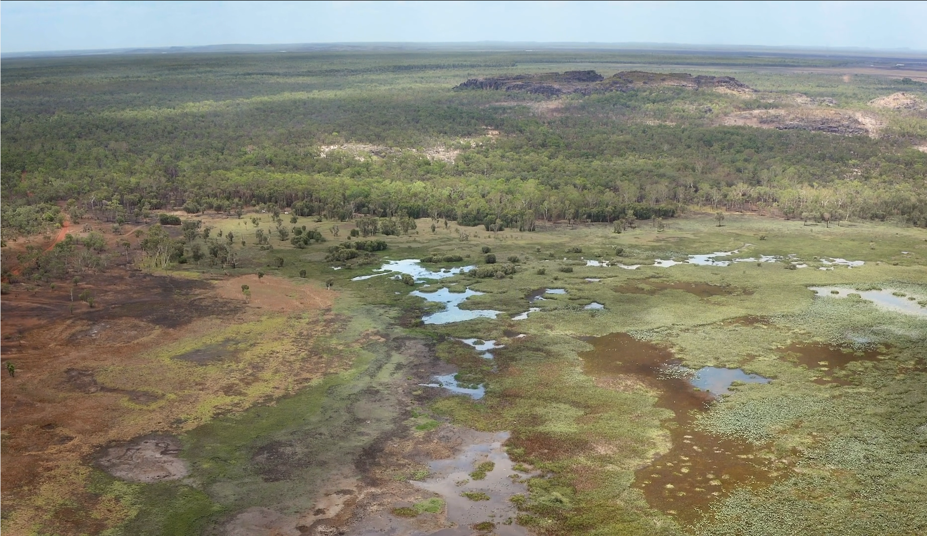 Kakadu healthy country microsoft drone