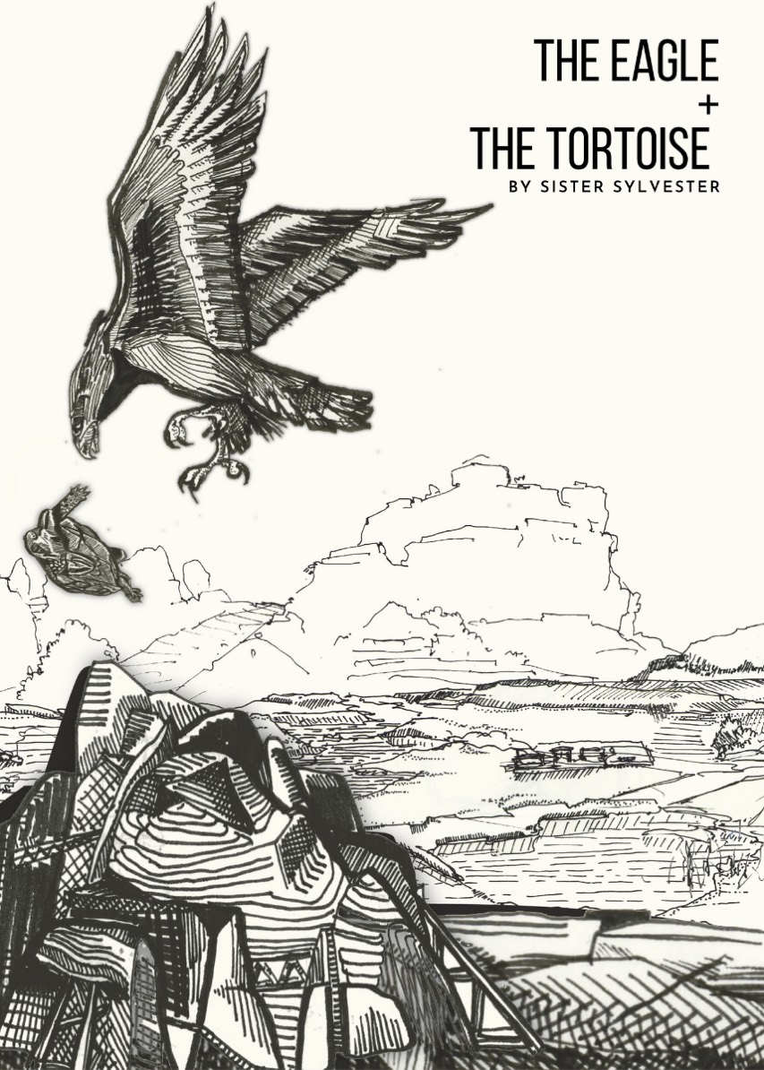 The-Eagle-And-The-Tortoise-Illustration-1