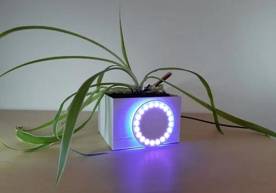 Connected Flowerpot