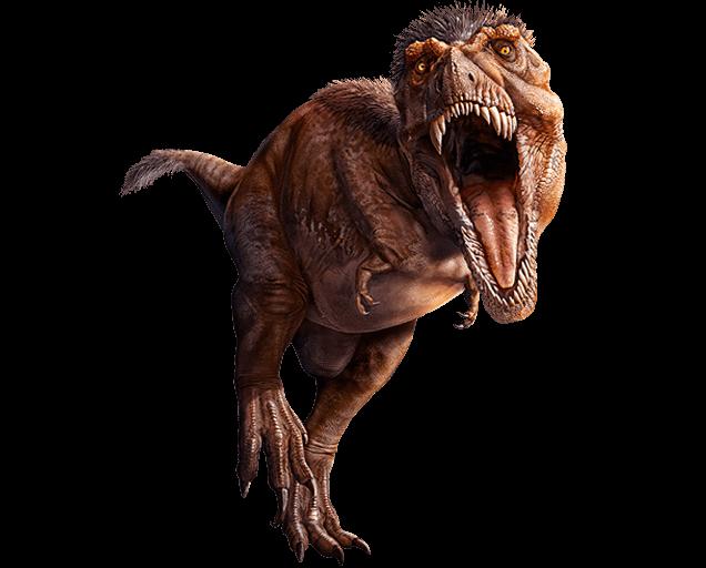 T rex 150 2x