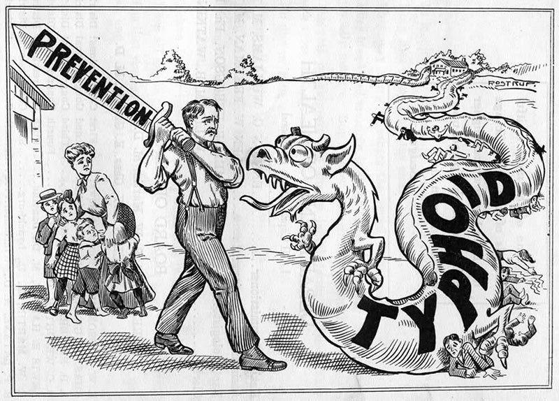 Typhoid mary political cartoon