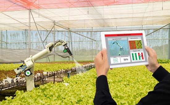 Python-Driven ML Tools For Robot Farming