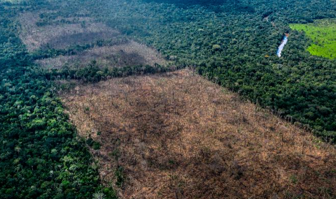 Amazon tribes are using drones to track deforestation in Brazil CNN