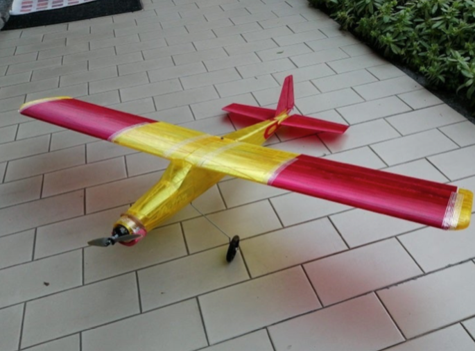 Muffin full 3D printed RC airplane by Quadkiller Thingiverse