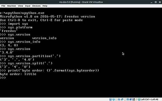 MicroPython on MSDOS