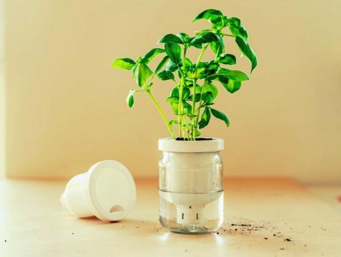 Jargar Self Watering Planter in a jar by Justinas Thingiverse