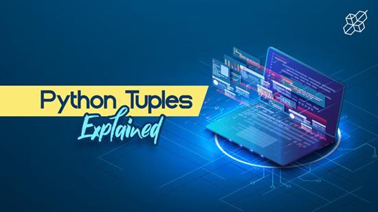 Python Tuples Explained