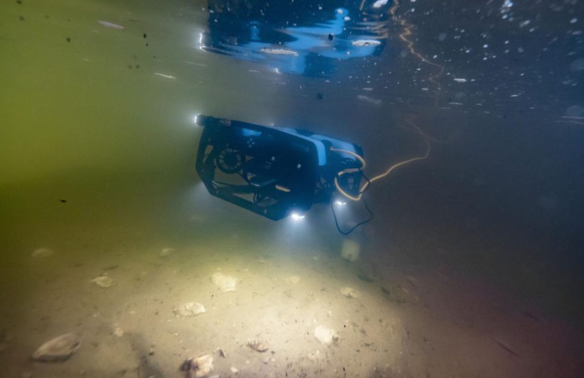 In Chesapeake oysters future underwater drones shellfish barges Fisheries bayjournal com