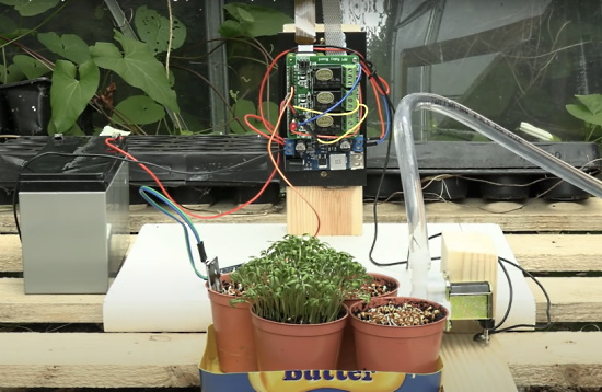 Raspberry Pi Zero waters your plants and records growth timelapse