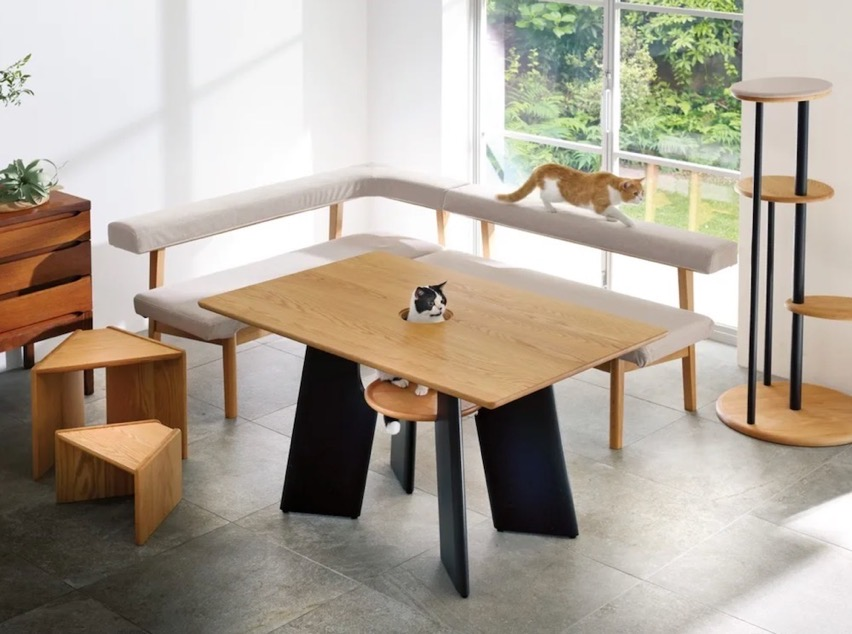 Dinos cat table 5