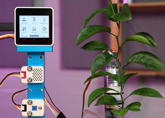 Automatic Indoor Garden